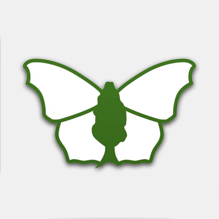 iRecord Butterflies logo