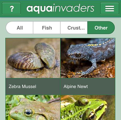 AquaInvaders app image