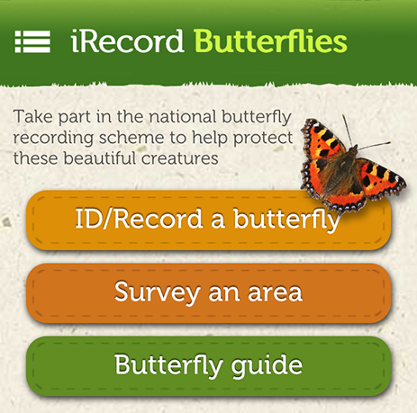 Butterfly home page - cropped