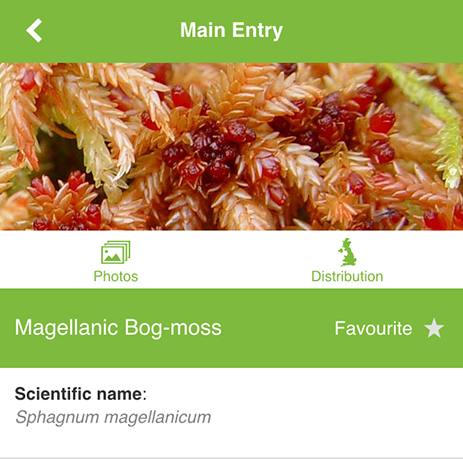 MoorMOSS app species info page