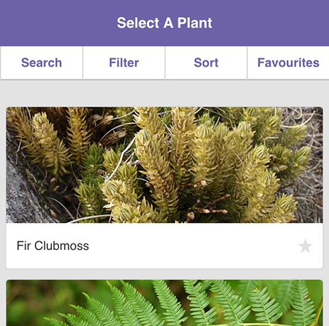 MoorPLANTS app home page