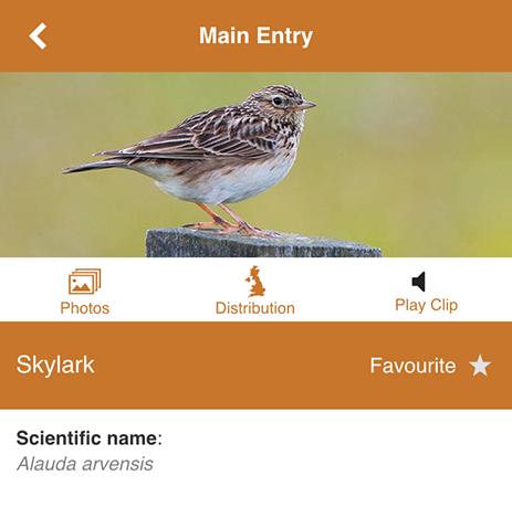 MoorWILD app species info screen