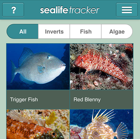 Sealife Tracker app home pageSealife Tracker app home page