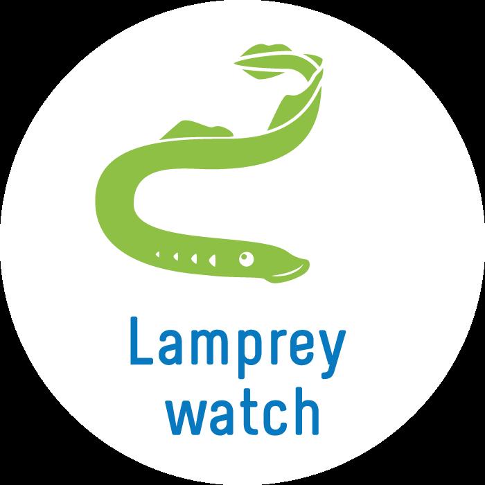 Lamprey Watch