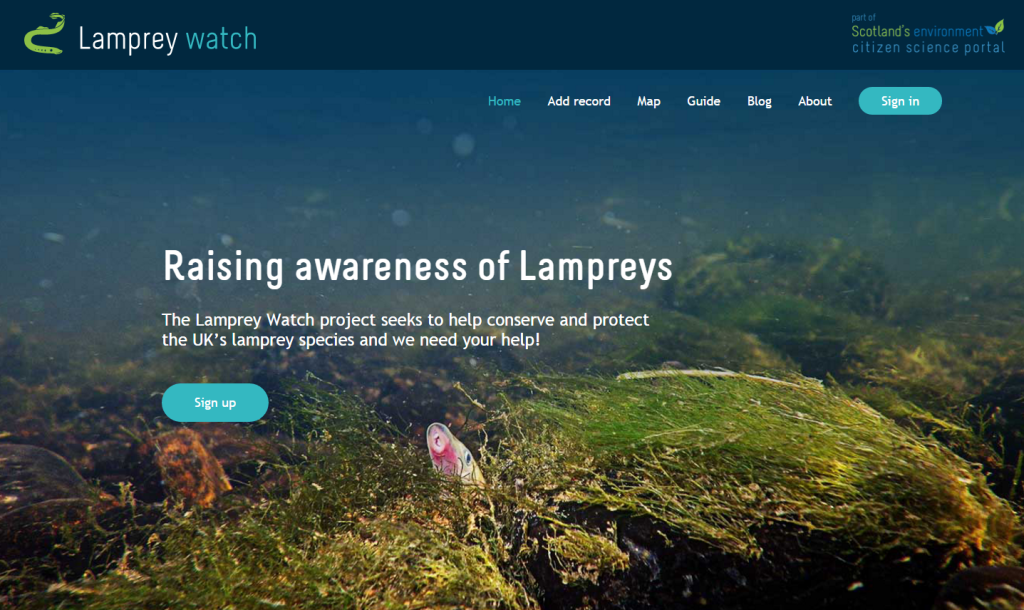 lamprey website homepage