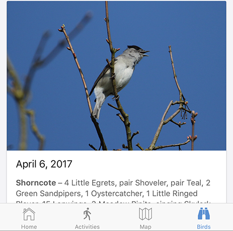 Example of recent bird sightings feed in the Cotswold Water Park app