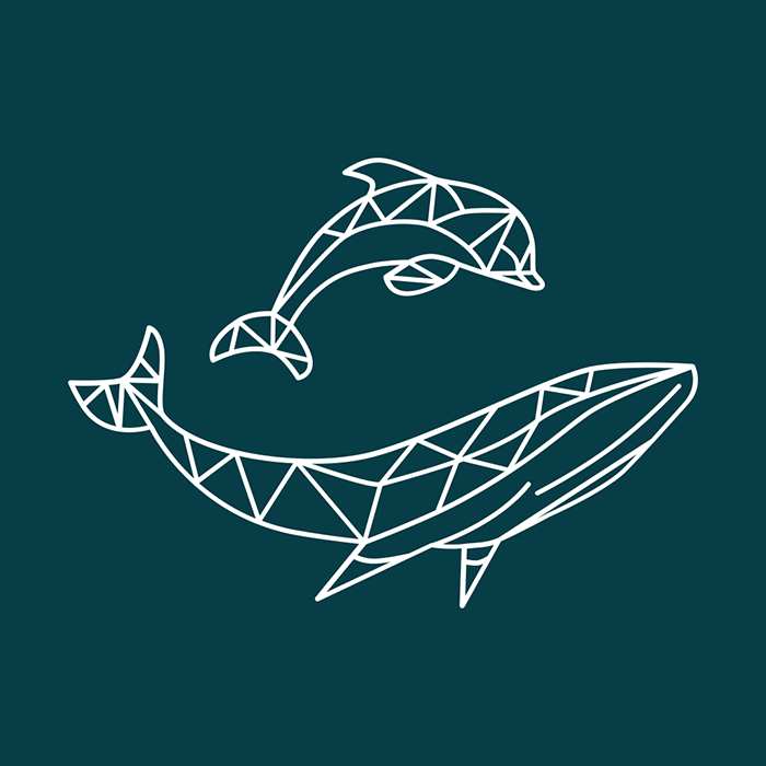 Whale Track icon