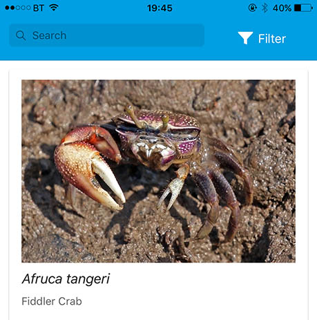 Screen from the Crab Watch App showing ID Guide