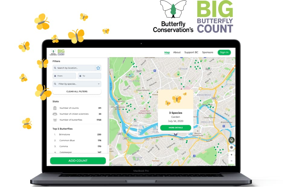 big butterfly count website